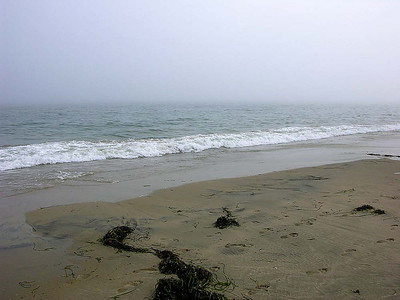 Sailing in the Fog_23