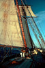 Morning, Pride of Baltimore II, enroute to Bermuda
