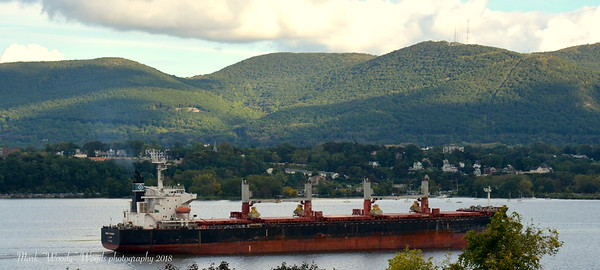 9/3/18 @ 16:50 hd hrs we have bulk carrier Genclo Picardy(MH) Marshall Islands registry  outbound. Bowwatch visable and deckhands visable. At 200 m = 219 yards long Pilot is steering over over 2 football fields down river.