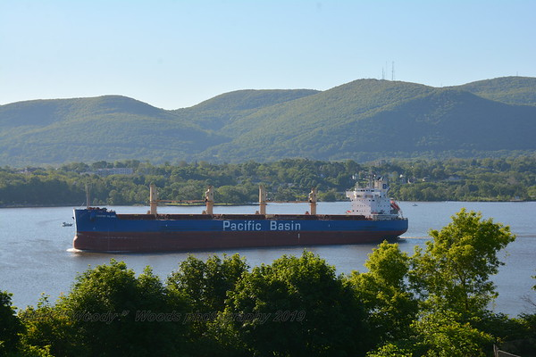 Today 5/24/19 at 07:30 hd hrs we have bulk carrier Pacific Bason's Copper Island inound For Port of Coeymans . Flag Hong Kong. Good profile on the bridge. No bow watch visable. At 190 m = 208 yards or 2 football fields +