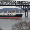Well everybody got home in time to shoot bulk carrier ELINA B 3/1/19 @ 15:05 hd hrs. A litte overcast but here is what I got. No profiles on the bridge but we know whos there. Bow watch visable orange hat.<br /> 199m = 214 yards or over2 football fields.