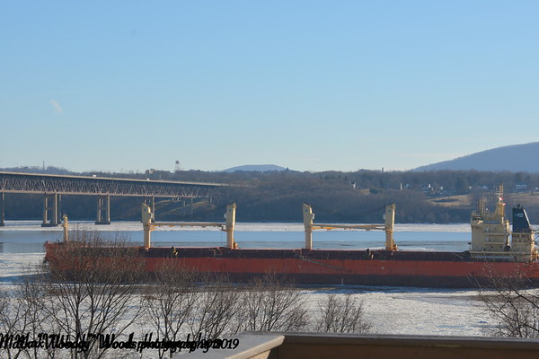 Today 2/6/19 at 08:45 hd hrs we have bulk carrier ULTRA OMEGA inbound for the port of Coeymans. Faint profile on the bridge.Seaman visable aft <br /> 199.99 m = 219 yards or over 2 football fields