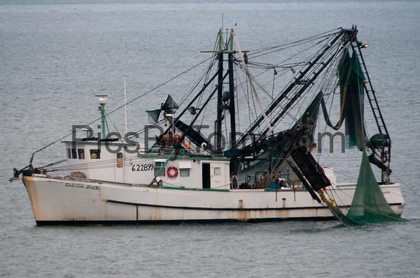 Shrimp  and Fishing Boats at Sea