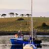Ballydorn,<br /> Strangford Lough,<br /> County Down