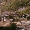 The landing at Pitcairn Island