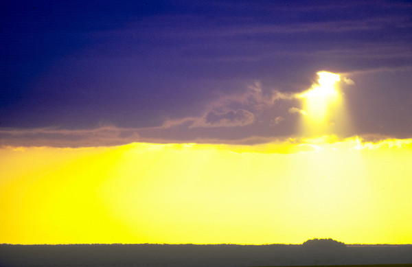 God Light in Florida                                                                                               Jeff Smith-NJphoto.Net