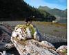ps_1188  Katie surveys her domain, Thunder Bay