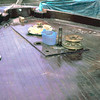 Bow Deck 3 R4