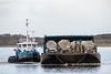 Tug Nelson River and its barge return to Moosonee.