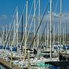 Fourth Mast - Brown Hull
