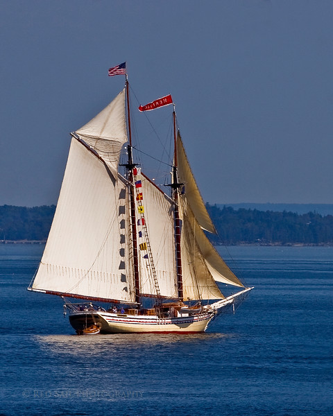 """Schooner Heritage. This 95' vessel was built in Rockland Maine, 1983. It carries 30 guests. More info at  <a href=""""http://www.schoonerheritage.com"""">http://www.schoonerheritage.com</a>"""