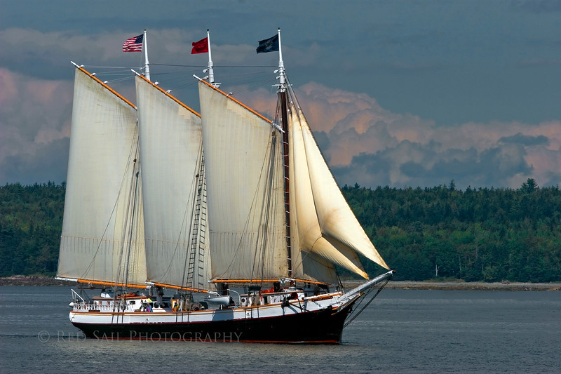 Schooner, Victory Chimes sailing the Eggemoggin Reach near Brooklin Maine. The Victory Chimes home port is Rockland Maine.
