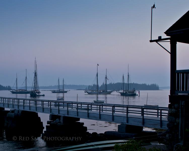 Evening Fleet