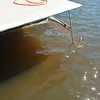Salvage Lake Blackshear - Lighthouse Dive Services - Failed when owner could not procure boat to drag sunk boat away from dock - 02-13-14-17
