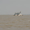 Miss Savannah Shrimp Boat Sunk on Sandbar near Brunswick, Georgia 05-05-09