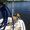 Salvage - Lighthouse Dive Services and TowBoatUS at Condo Dock Golden Isles Marina 07-06-16
