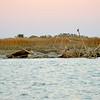 Sea Hawk Shrimp Boat Sunk on Sandbar near Valona and Brunswick, Georgia just off the Intracoastal Waterway (ICW). Sunk in 2009...Here she is in 2011. 01-22-11