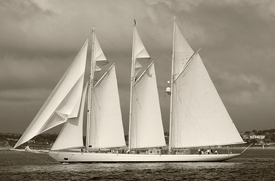 Yachts in monochrome