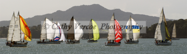Start of the Auckland to tauranga race in Auckland.