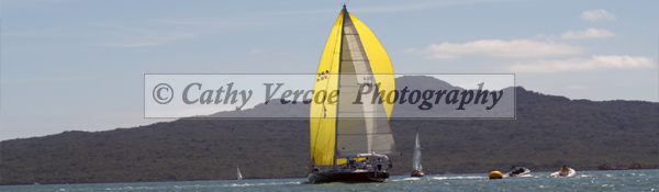 Yellow Spinnaker on yacht sailing in Auckland.