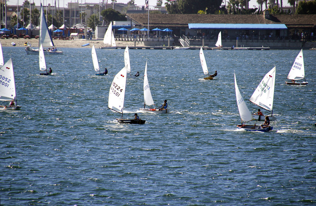 Sailboat Race San Diego