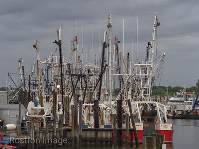 Commercial Fleet, Point Pleasant Beach, NJ