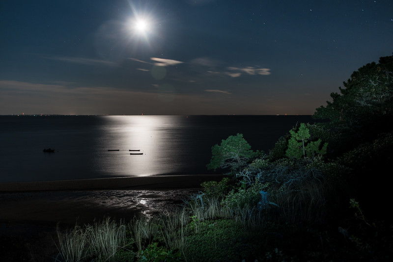 NightBoats-39.jpg