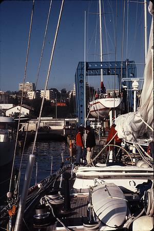 Transatlantic 1984