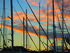 Masts at sunset