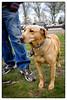 p1020190_KLeistner_050514_Snapseed