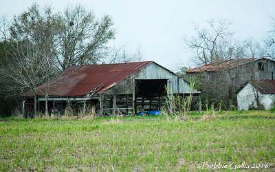 ©Bobbie Gallia; 'Hangin On'; Old barn, sturdy and not giving up, south Louisiana near Avery Island.