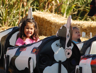 Students from Patwin Elementary School in Davis and children from a local daycare center visited Bobby Dazzler's Pumpkin Patch this October, where they enjoyed a petting zoo, cow car rides and a corn-filled pit in addition to plenty of pumpkins.