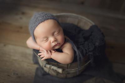 bobby newborn mini