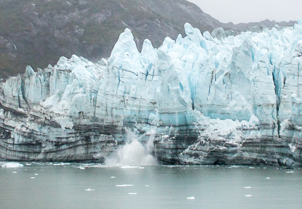 C-Glacier Bay-6111