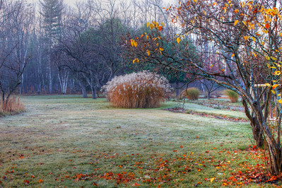 _MG_1285_6_7_tonemapped