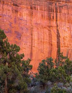 Canyon within Escalante Grand Staircase