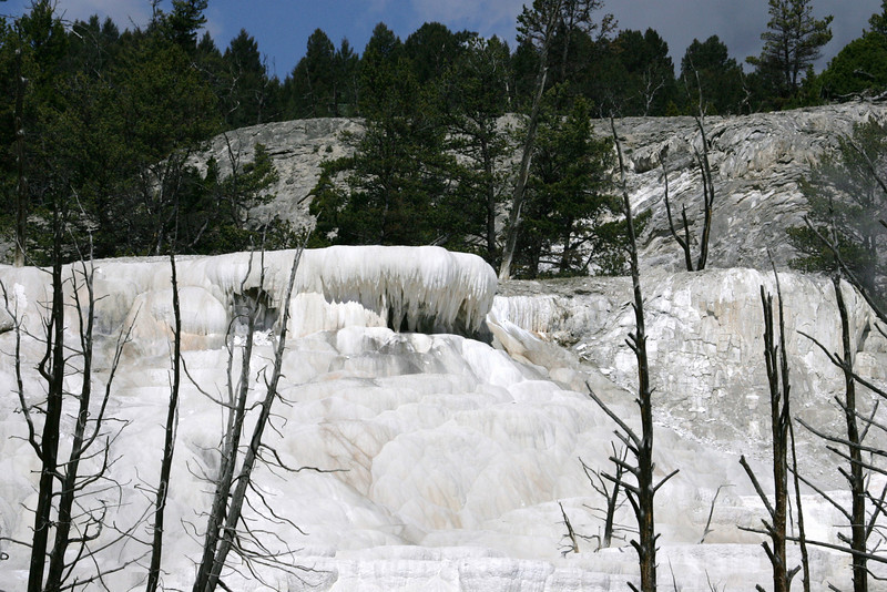 Calcium Carbonate Deposits in Yellowstone National Park
