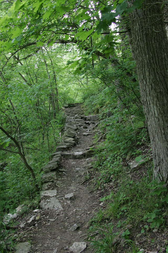 Hiking Trail at Roaring River State Park, MO
