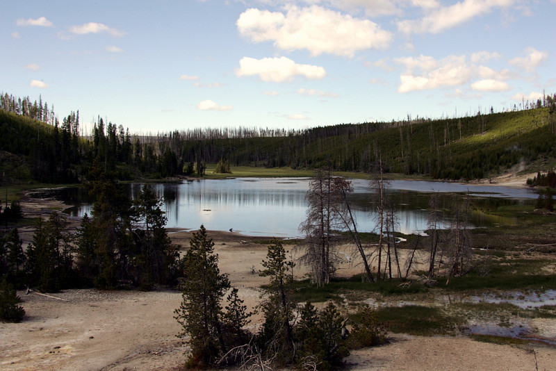 Small Lake in Yellowstone National Park