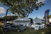 8th Annual Boca Raton Concours d' Elegance on the Green