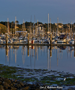 Sunrise at Bodega Harbor. 4-8-12