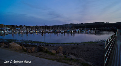 Sunrise, Jetty walkway entrance view of Bodega Harbor. April 8, 2012 - 6:05 am