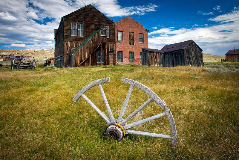 """Wagon Wheel in Grass"""