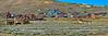 """Bodie Panorama Looking East"""