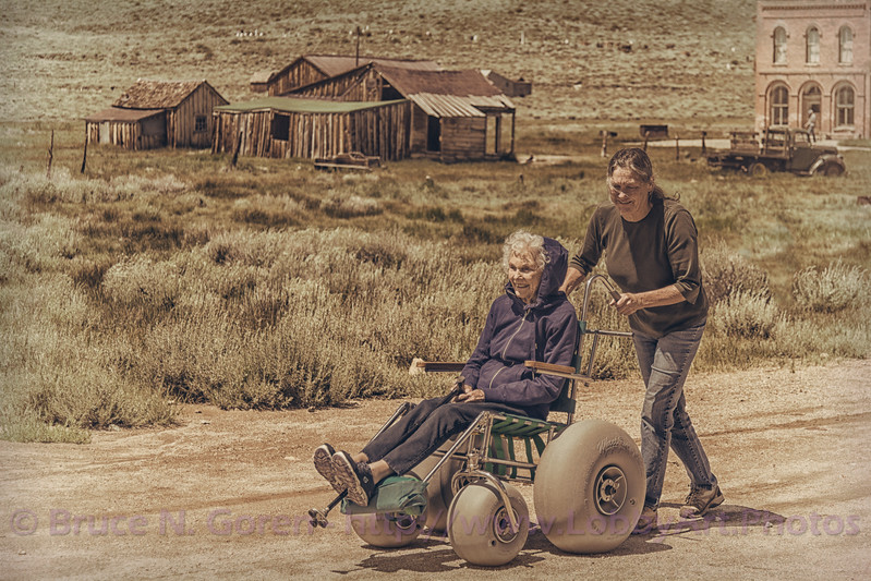 Dune Buggy Wheel Chair