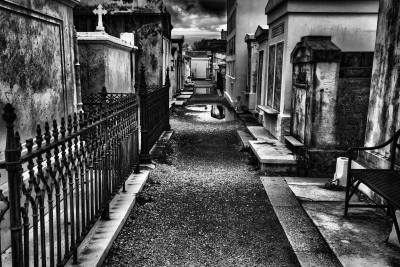 Nawlins:  City of the Dead