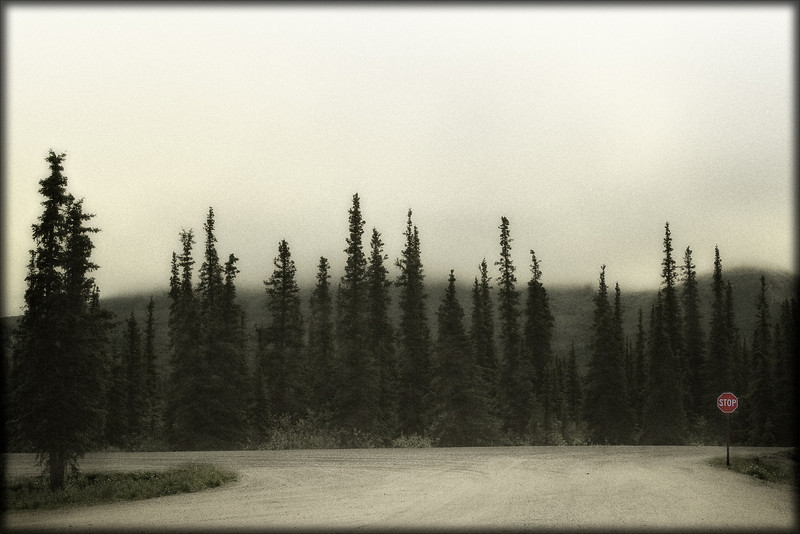 Denali -Edge of Wilderness