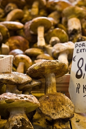 Porcini mushromms for sale in the Florence food market