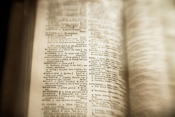 The Dictionary #1