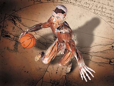 DCSbasketball